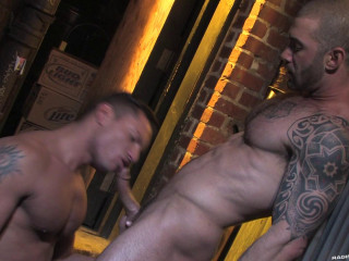 Furious Stallion - The Visitor - Angelo Marconi, Logan McCree, Younger Stellano