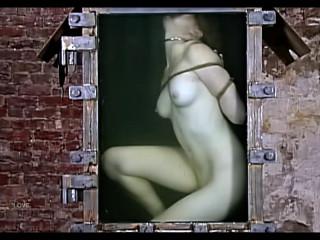 Torture Videos