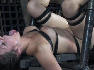 IR   Dee - Restrain bondage Pig Part 2 (2020)