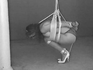 Restrain bondage Model Wanted