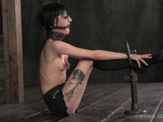 HardTied - Bad Bunny - Bunny Damsel (Cadence Cross), PD - Nov 29, 2013