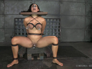 Brat Training  Its Not About You , Bdsm Action