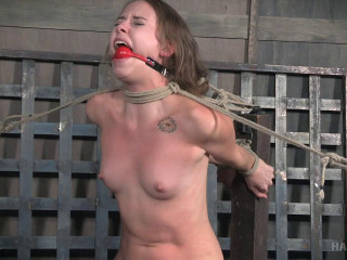 Zoey Laine - Kittle Flogged (2017)