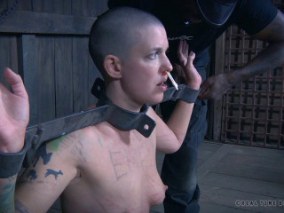 The Extended Feed Of Miss Dupree # 4 (12 Sep 2015) Real Time Restrain bondage