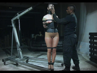Abigail Dupree high - BDSM, Humiliation, Torment