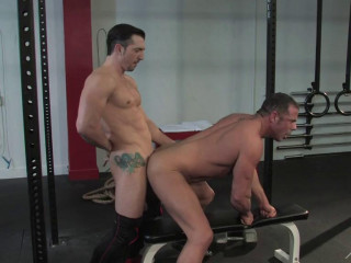 Musclebound studs