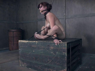 InfernalRestraints - Stephie Staar - Stuff Me Staar