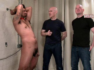 BreederFuckers Liam 7th video - Liam Ordered To Suck Cock