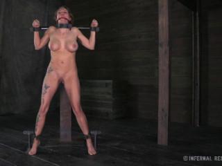 Ass Trauma , HD 720p