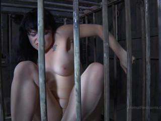 IR - Oct 24, 2014 - Siouxsie Q, PD - The Farm: Part 1 Checkmate - HD