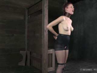 Ashley Lane (Whipped, Bound And Boxed)