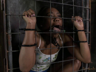 Dicksucker Chanell Heart encaged and used, aggressive penalizing deepthroat on Ten inch BBC!