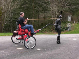 Testing the Splits Cart