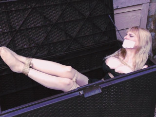 Box Bondage Big-Boobed Babe Bound in Silky Slip Outdoors
