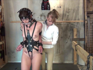 Sightless Harnessed Bitted