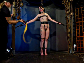 Restrained Lash en Dragontail - Abigail Annalee