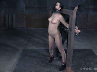 Olivia Fawn-Pay the Price