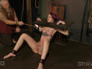 Whips and Stocks for marionette jess