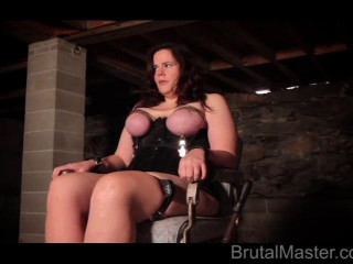 Cow - Beauty Chair Torture