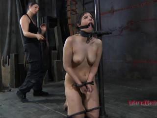 Assets Jail Featuring Marina