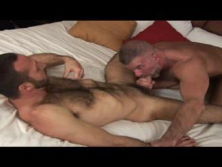 Sexi Big Bears