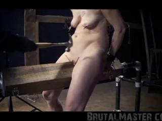 BrutalMaster - Pig - Nailed Cunt