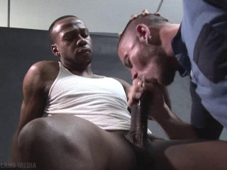 Cock Hounds