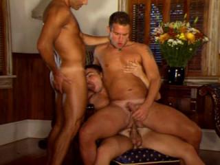 17 hot studs in hard orgies