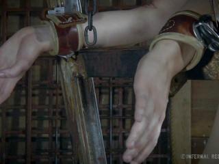 Harley Ace, Winnie Rider, Ashley Lane - Restrain bondage Is The Fresh Black: Gig 2 HD 720p