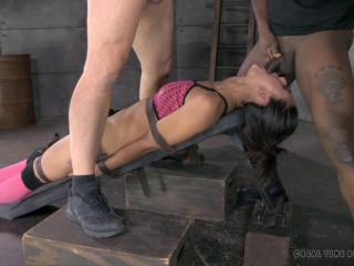Lyla Storm, Matt Williams, Jack Hammer - Party Hard , HD 720p