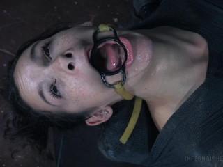 Deep throat Fixation- Eden Sin
