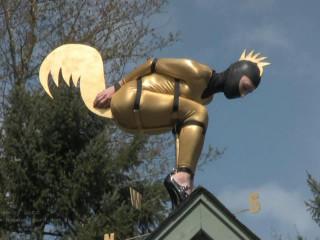 Golden Bird at the Schloss