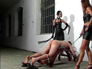 Debut of Lady Suzy - Brutal Amazons