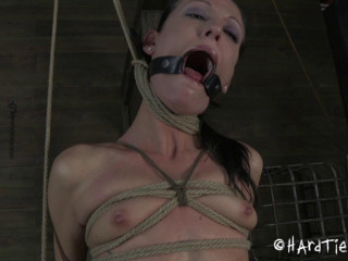 Hardtied - Jun 20, 2012 - made Vibration