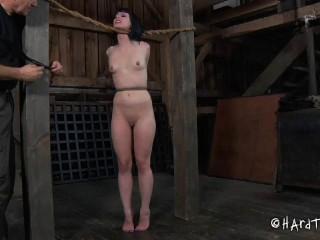 Katharine Cane - Stretching Legs