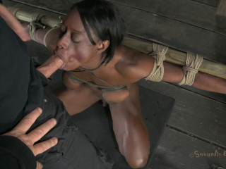 Bound, oiled, strung up upside down, mouth fucked, made to cum!