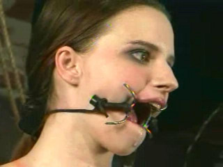 Insex - Arabesque (Live Feed From September 8, 2001) RAW (AZ, 828)