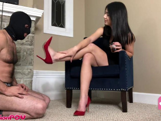 Shoe Pig Licks The Heels That He Paid For