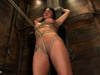 Warm gorgeous Hawaiian is bound to a pole, raised to her peak toes with a fierce groin rope. Made to cum!