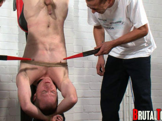 Brutal Tops - Hung, Pissed On And Shoked