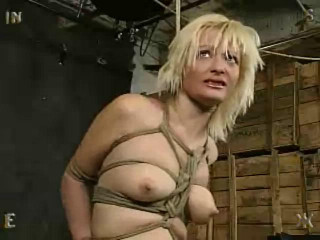 Insex - Angelica