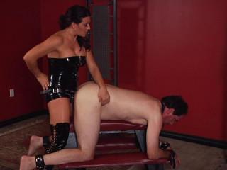 Perversion & Punishment Vol. 6