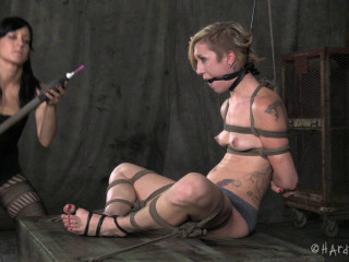 Trussed and Bashed