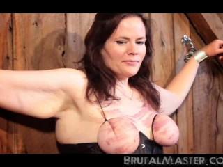 Slave Cow - Shocked Bitch