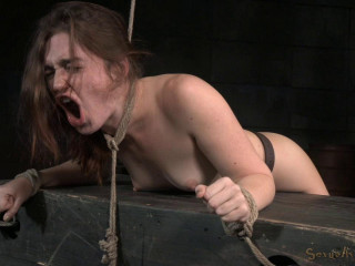 Obese dark-haired Jodi Taylor arched over, strapped and used hard