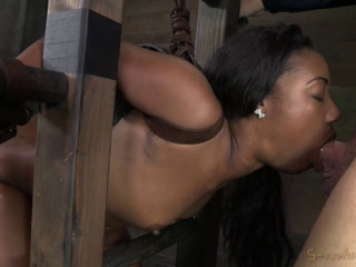 Chanell Heart Ladder Bound Tag Teamed From Both Ends Brutal Deepthroat