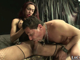 Italian Shemales Demolish Cock-squeezing Bitches