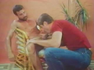 Al Parker's Flashback (1981) - Kirk Mannheim, David Wilcox, Al Parker