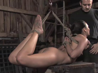 Wood Paramour Part One - Crissy Moon