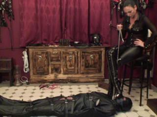 Bootlicker's Interrogation Two